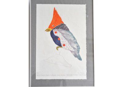 Charlotte REINE, gravure oiseau