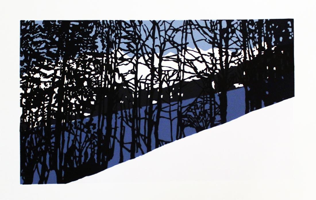 gravure de Thomas Villette - exposition Inspiration Nature à Nontron