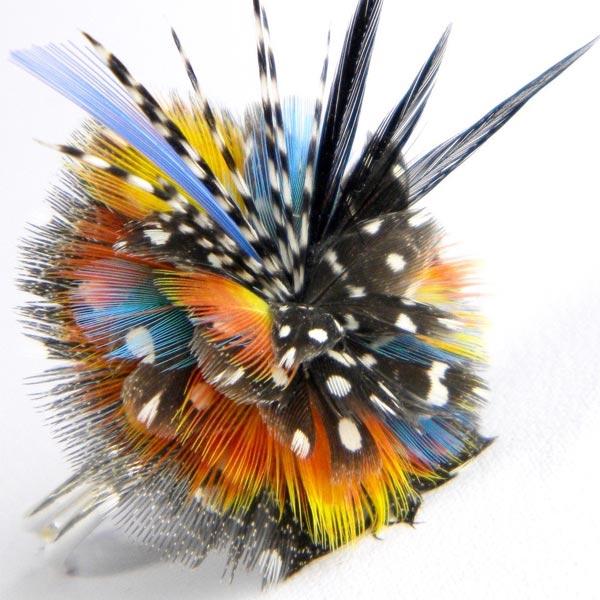 Thierry Vandendrissche - Couleurs de plumes, plumassier, bijoux